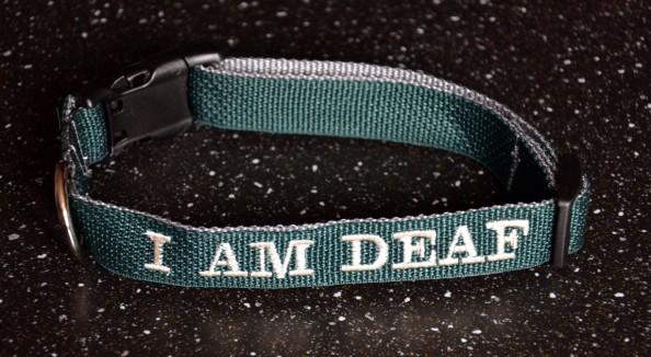 Jan-28-2013-collar