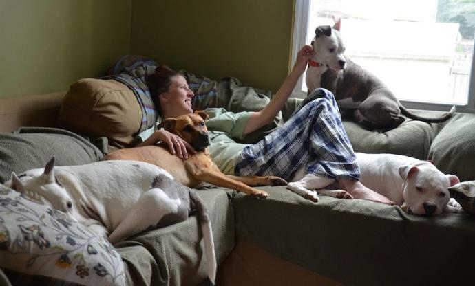 Jun 09 2014 dogs