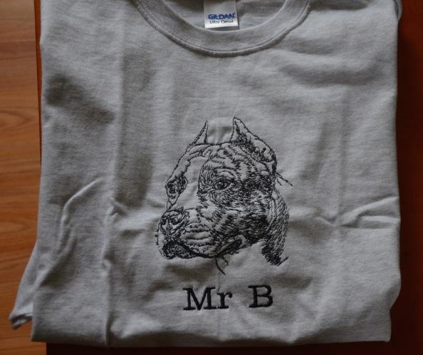 Jan 14 2015 B shirt