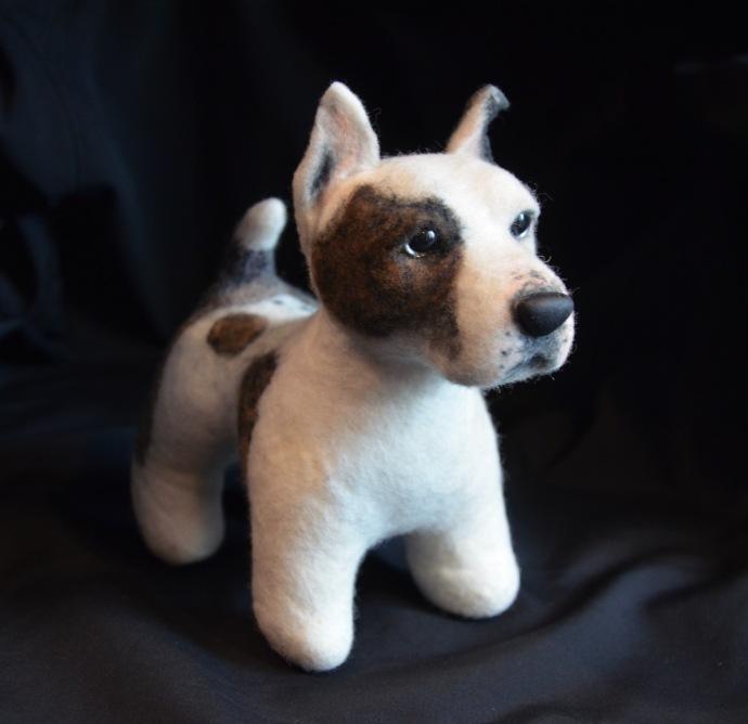 Jan 21 2015 Pup B